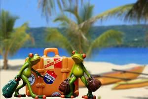 Gepackte Koffer für die Reise