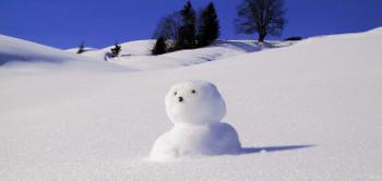 Amerikanischer Schneemann