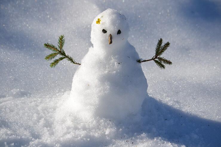 Kleiner Schneemann mit Blümchen