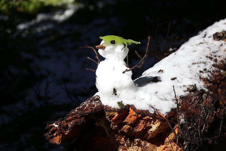 Schneemann mit Blatt als Hut