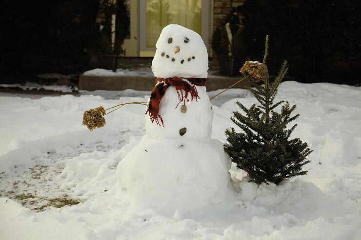 Lustiger Schneemann