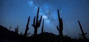 Milchstraße über Wüste