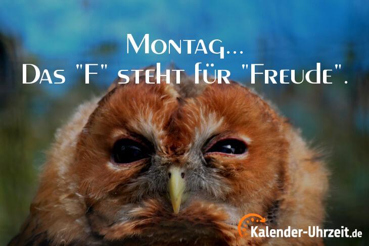 Lustiger Montagsspruch - Das F steht für Freude