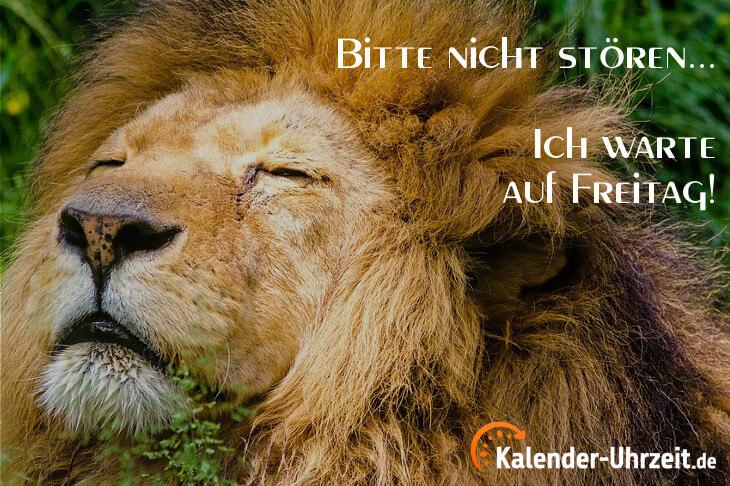 Lustiger Spruch zum Donnerstag: Bitte nicht stören...