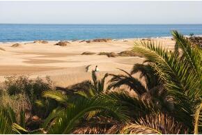 Gran Canaria Maspalmas