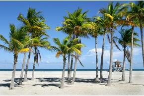 Strand in der Florida