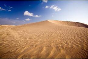 Düne auf Fuerteventura