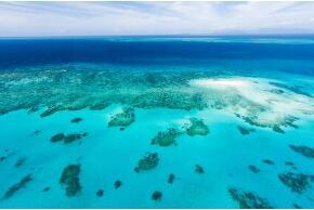 Great Barrier Reef in Australien